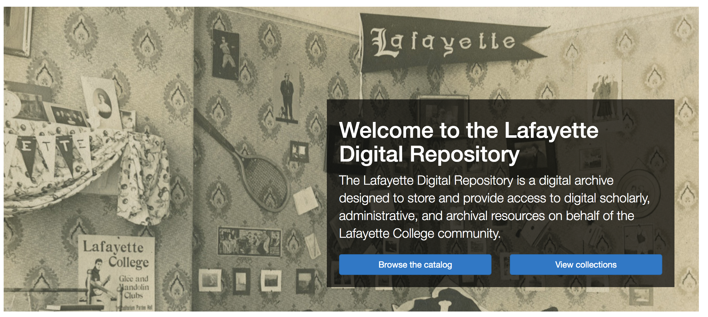 Screenshot of landing page of repository, featuring historic image of Lafayette flags